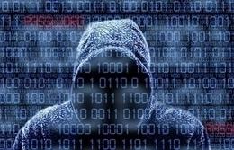 الهاكرز يربحون آلاف الدولارات بعد هجومهم الإلكتروني
