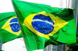 تعليق اللحوم البرازيلية