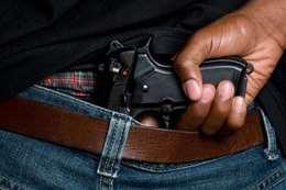 السلاح الميري