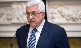 """""""ابومازن"""": نقل السفارة الأمريكية إلى القدس """"عدوانا علينا"""""""