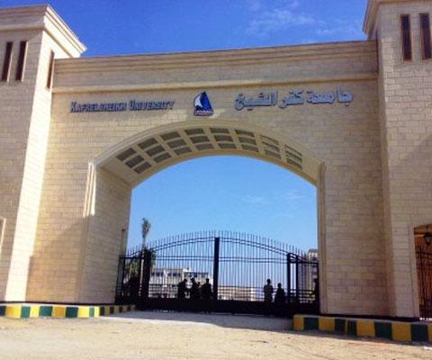 جامعة كفر الشيخ تحصد المركز الأول في الرسم والجوالة