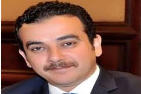 أحمد محمود الدريملى، الخبير القانوني
