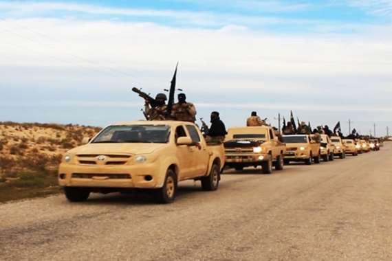 حرب بلا هوادة ضد داعش في سيناء