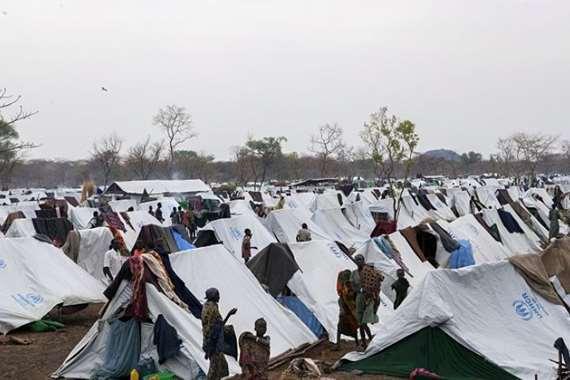 850 ألف لاجئ من دول الجوار